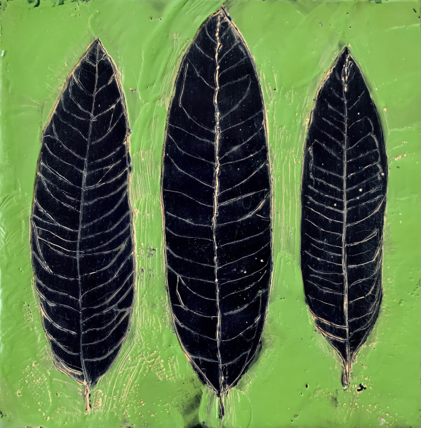 Leaf Series/Milkweed by Sally Hootnick