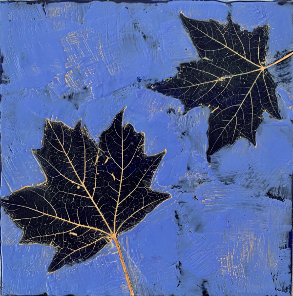 LeafSeries/Maple by Sally Hootnick