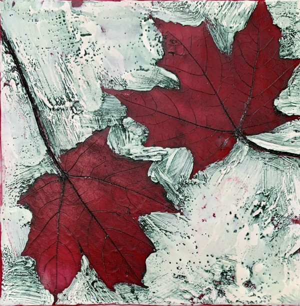 Maple by Sally Hootnick