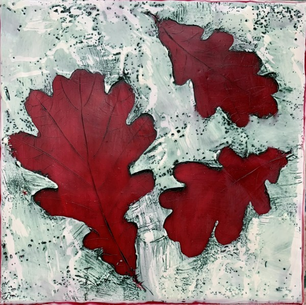 Pin Oak by Sally Hootnick