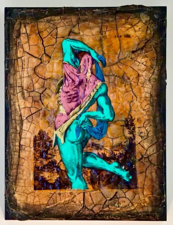 More Than My Own Skin by Terri Maxfield Lipp
