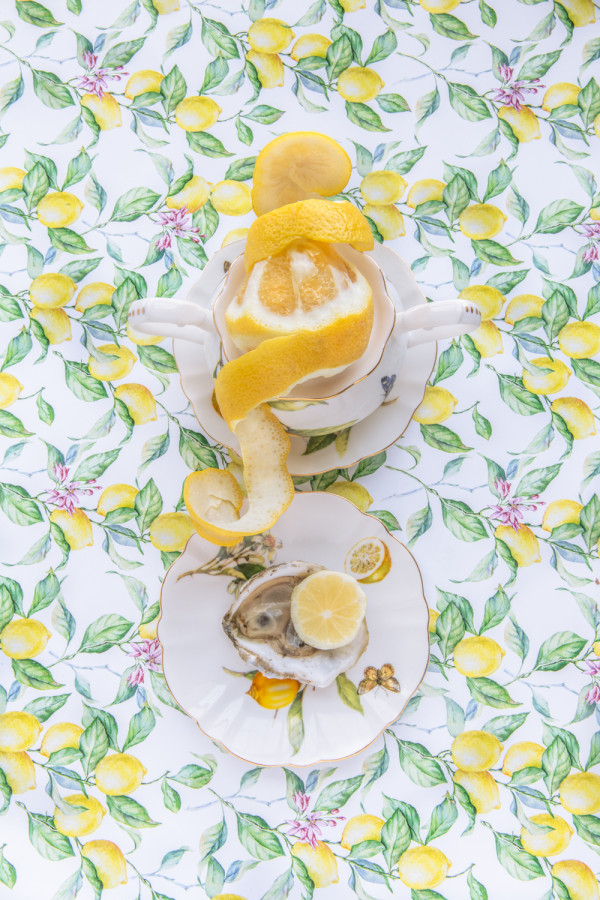 Gracie Lemonata with Lemon by JP Terlizzi