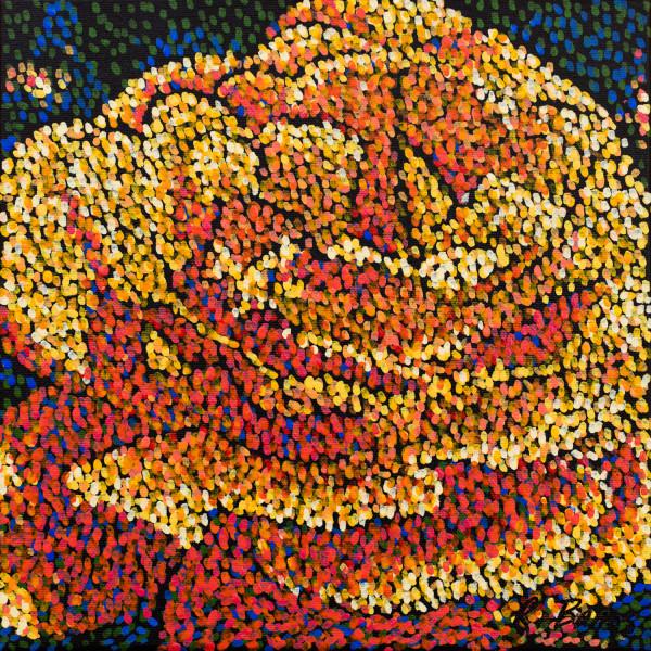 Filoli Rose 2 by Rebecca Bangs