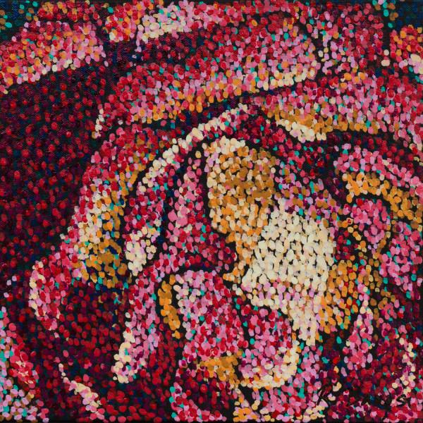 Filoli Rose 6 by Rebecca Bangs