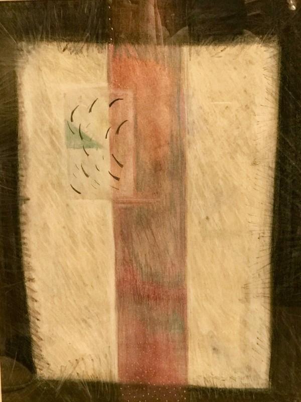 永远的覆盆子地-文件由卡洛琳克莱默