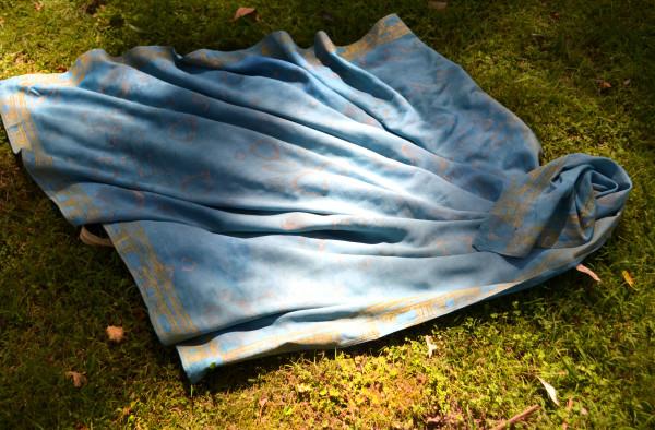 Bones in Blue II by Ellen Howell