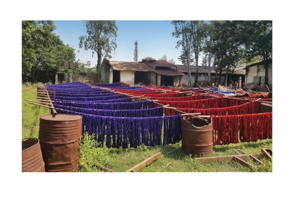 Khardi Cotton drying in the sun in Bargarh I by Ellen Howell