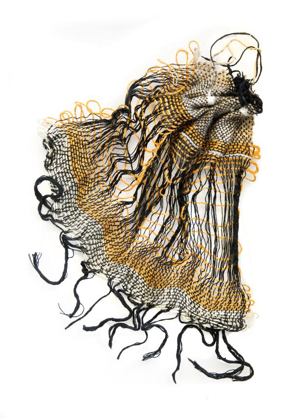 Jellyfish by Ellen Howell