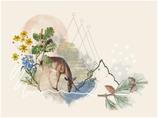 Keep the Wild, Wild by Liz Mares