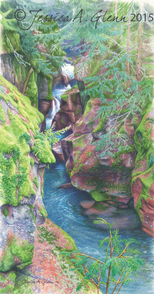 Avalanche Gorge by Jessica Glenn