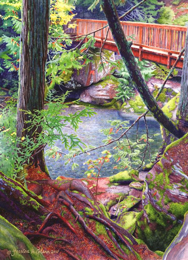 Avalanche Creek Verdure by Jessica Glenn