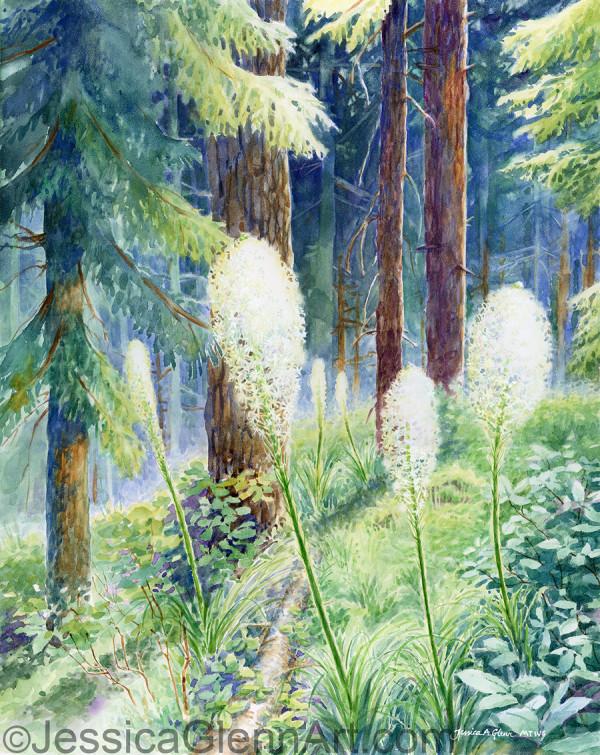 Beargrass by Jessica Glenn