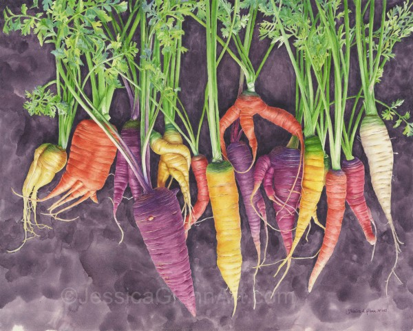Not A Carrot All by Jessica Glenn