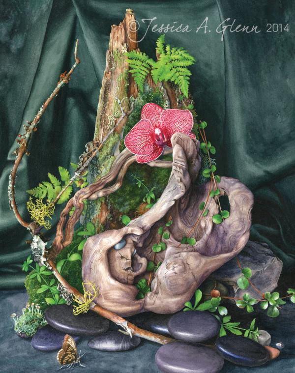 Woodland Meditation by Jessica Glenn