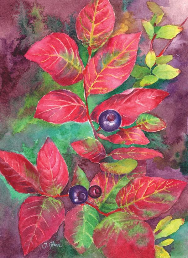 Huckleberry by Jessica Glenn