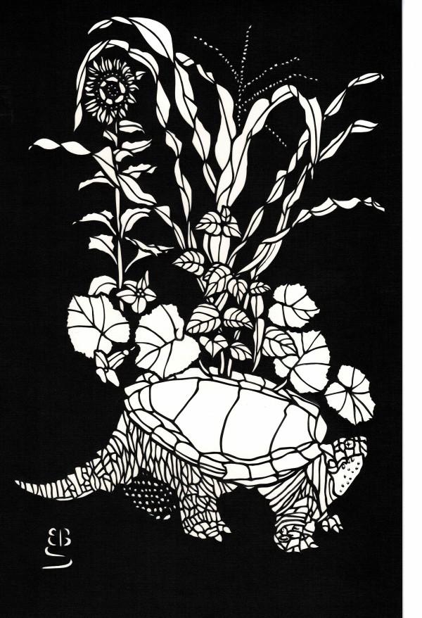 Turtle Island by Ellen Sandbeck