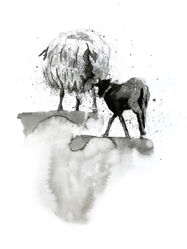 Heidschnucke ewe and lamb by Audrey Reilly