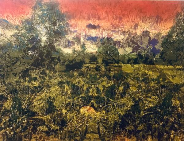 Stroll in the Dells by Debra Sutherland Core  Fine Art