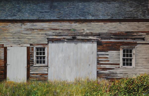 Deer Isle Maine Barn by Carol Rowan