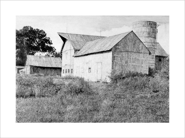 Old Man's Barn by Carol Rowan