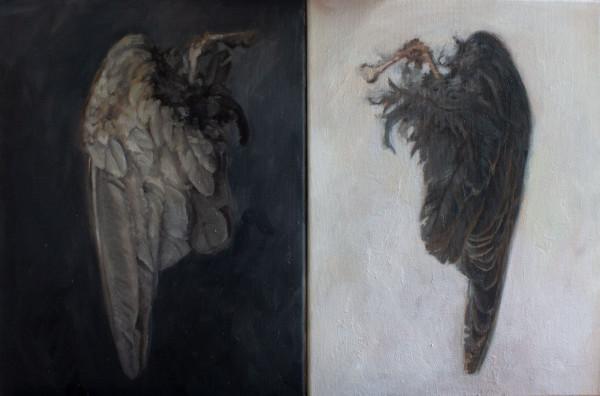 Wings by Leona Gamble