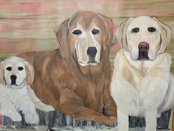 Three Dogs by Deborah A. Berlin