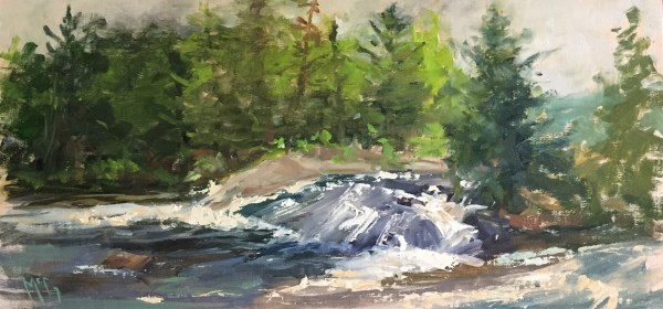 """Bog's River Falls"" by Bonnie J McGown"