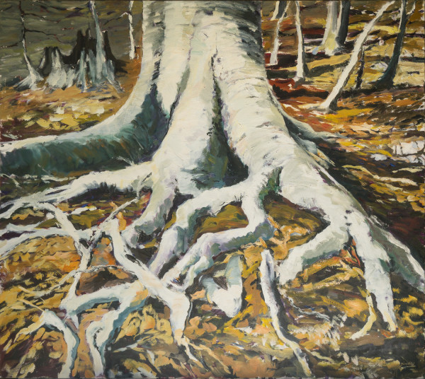 Beech Roots by Julie and Ken Girardini