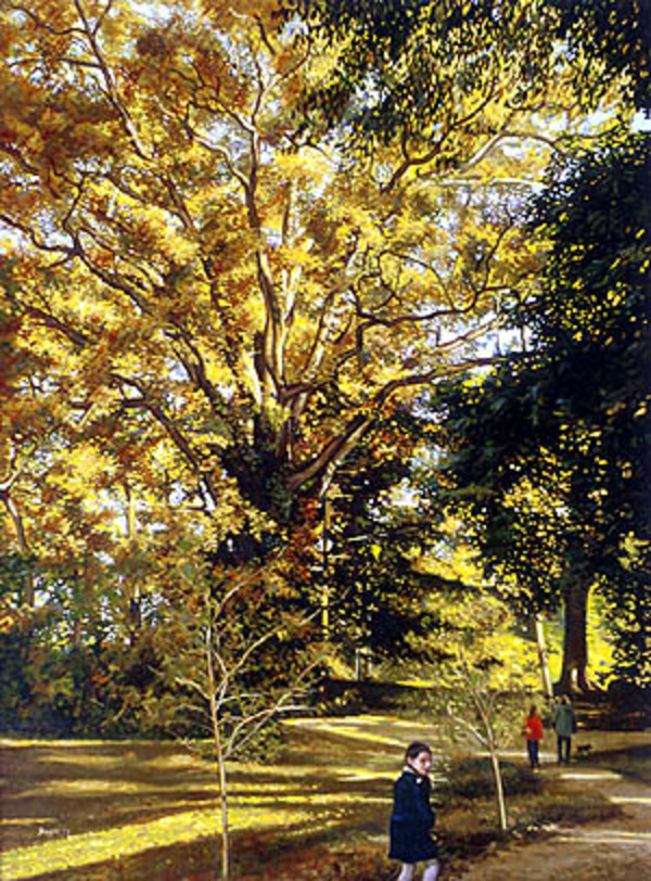 Tree in Autumn by Frank Wright