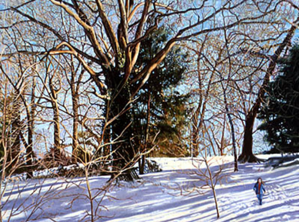 Tree in Snow by Frank Wright