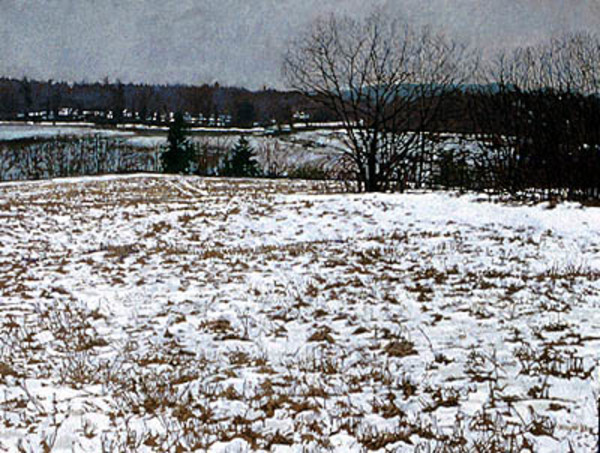 Field in Snow by Frank Wright