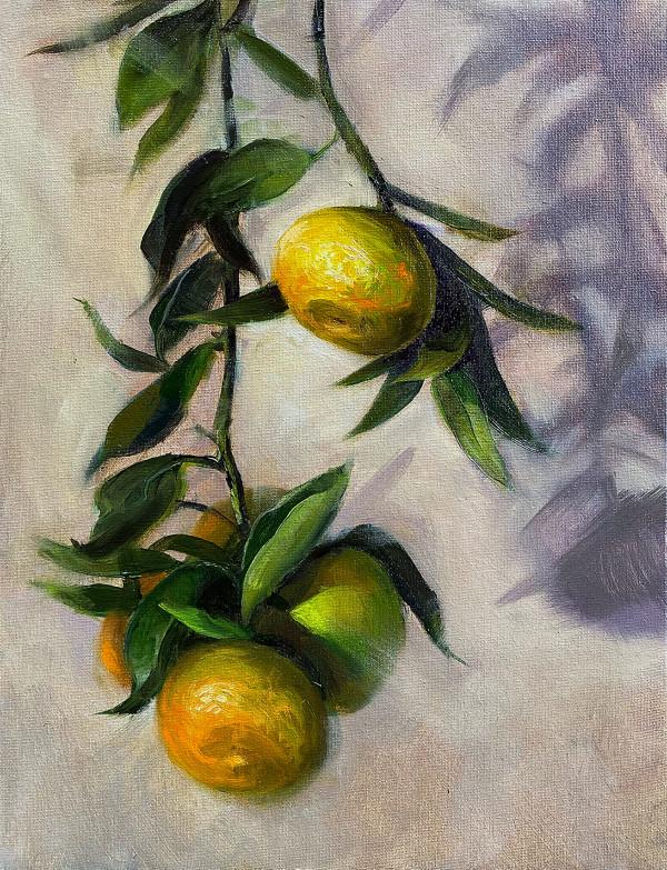 Vitamin C by Deana Evstefeeva