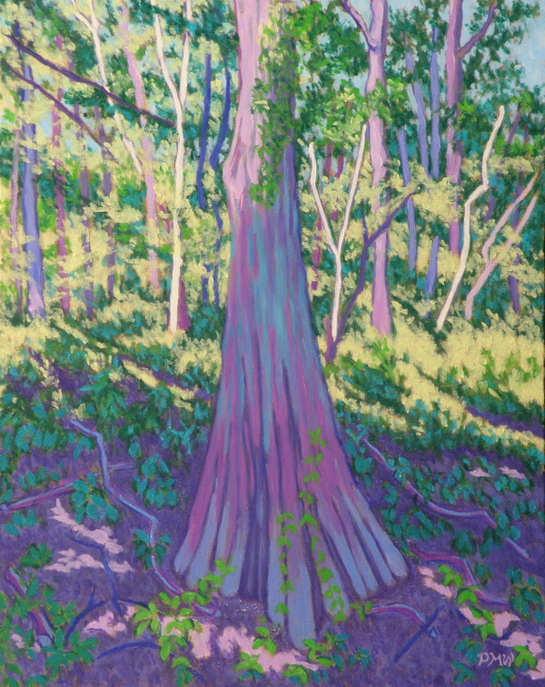 Cypress in Slanting Light by Peggy Walters