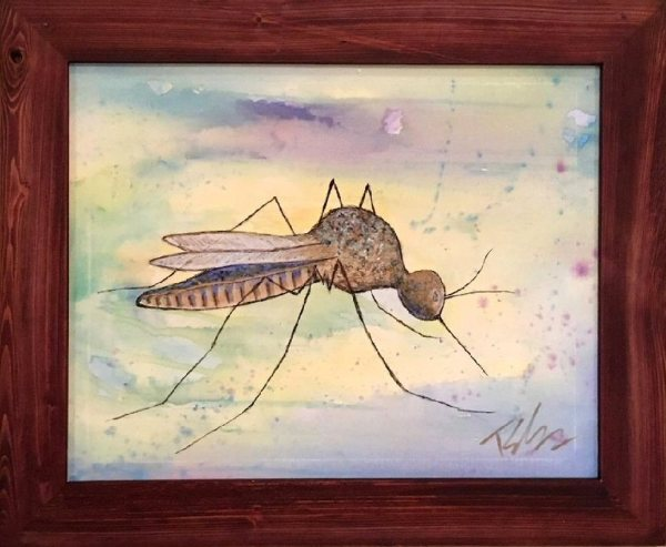Blue Mosquito by Toby Elder