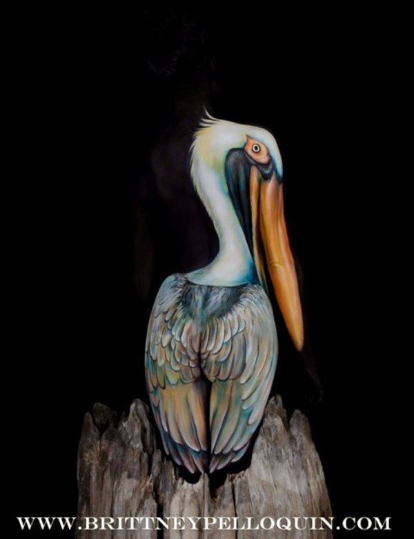 The Pelican by Brittney Pelloquin