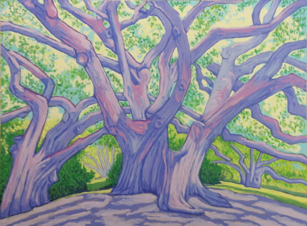 Avery Island Oaks by Peggy Walters