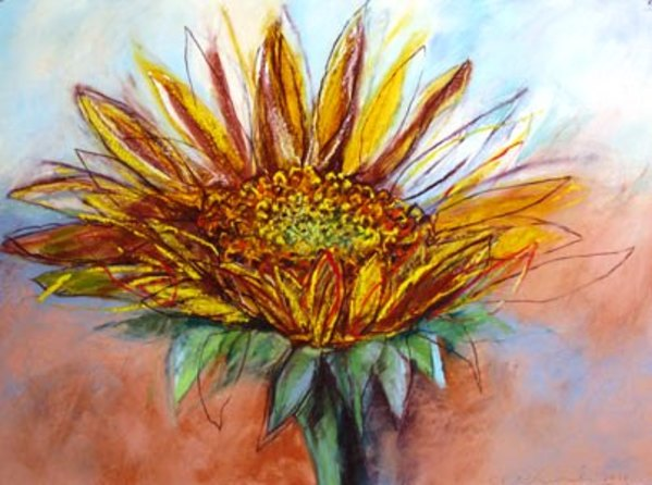 Sunflower by Kristin Pluhacek