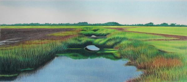 Backwaters by Deborah Murphy
