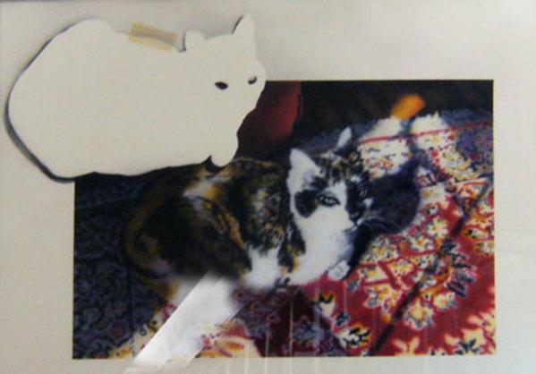 Mr. Swing's Cat by Carl Coniglio