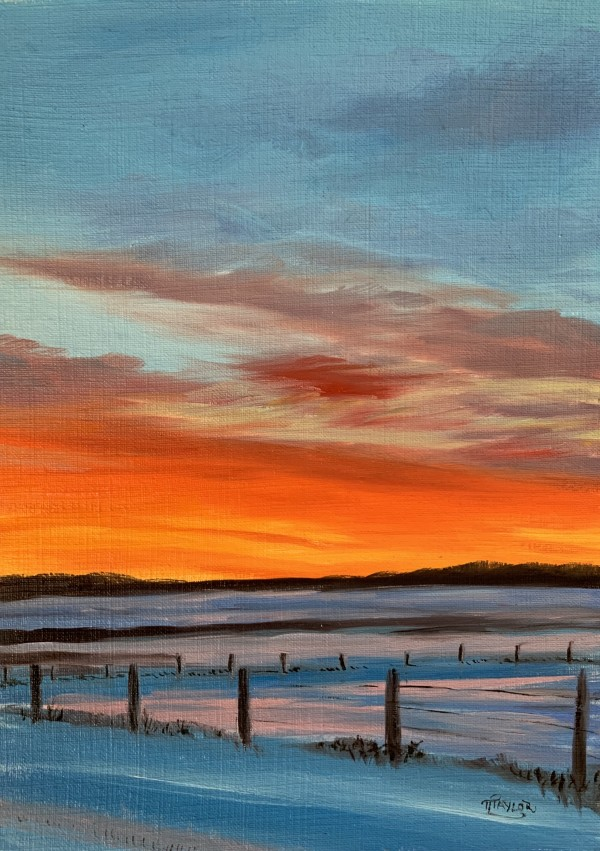 Fire and Ice by Tammy Taylor