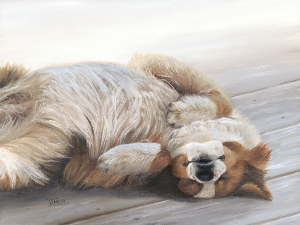 Dog Gone Tired by Tammy Taylor