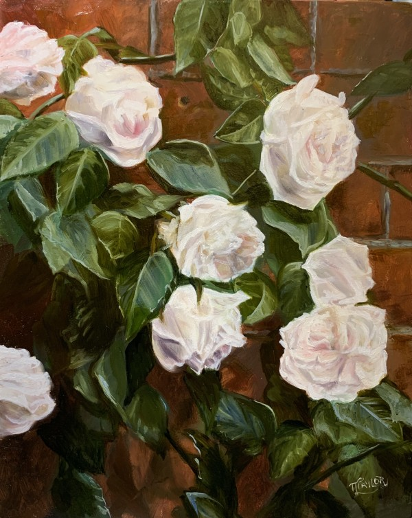The Rose Wall by Tammy Taylor