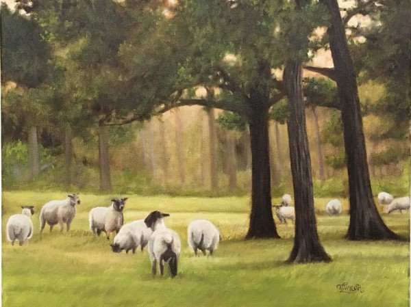 Peaceful Pastures by Tammy Taylor