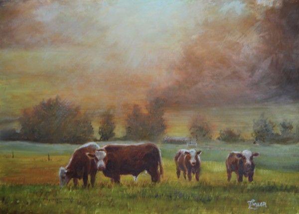 Sunrise On The Pastures by Tammy Taylor