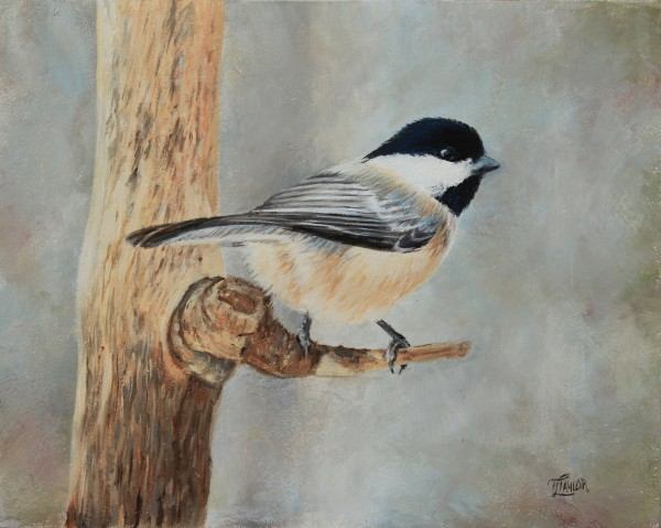 Dee's Chickadee by Tammy Taylor