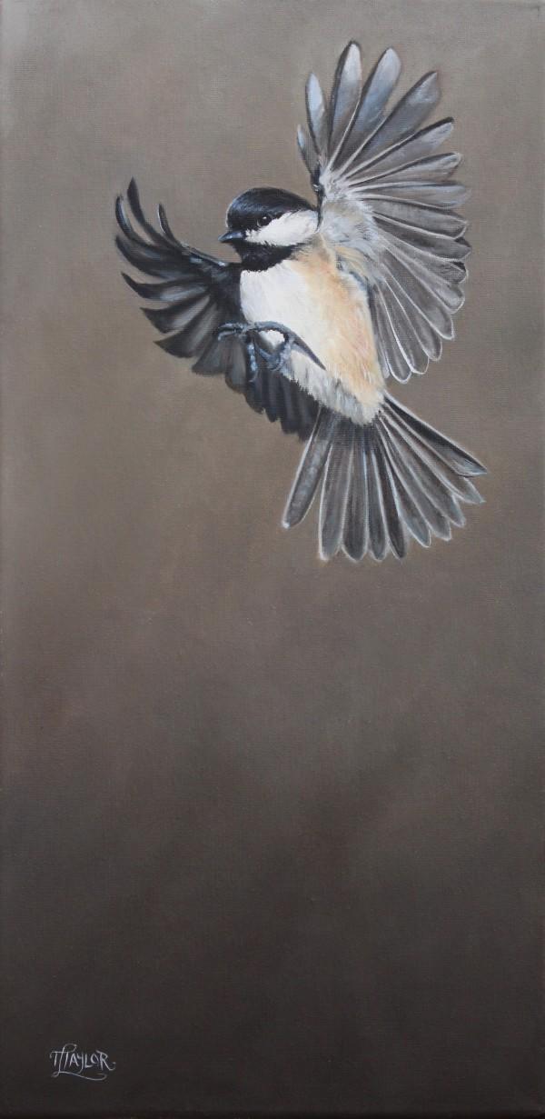 Free Bird by Tammy Taylor