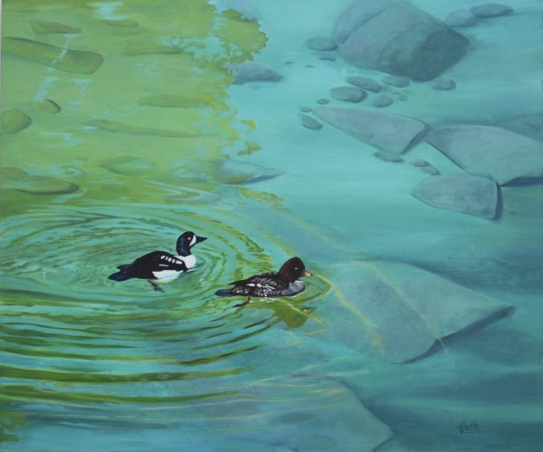 Reflections in Turquise - Barrow's goldeneye by Tammy Taylor