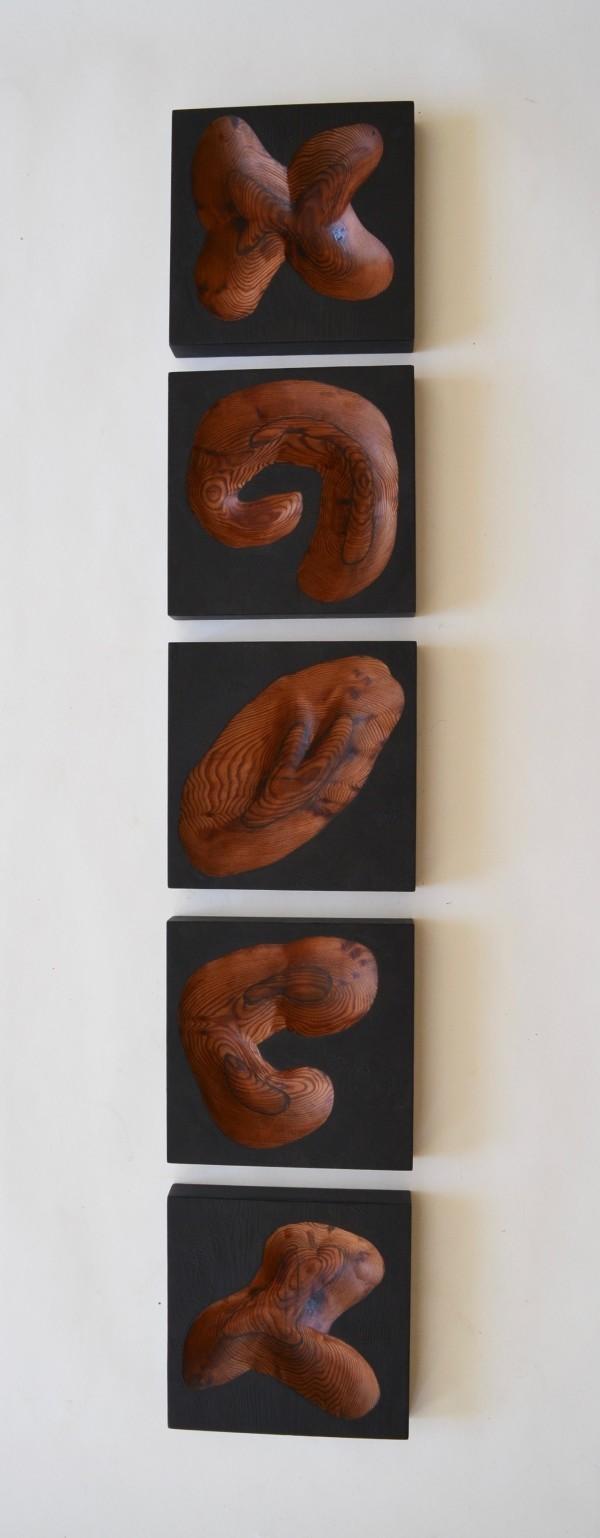 Cinco by Lutz Hornischer
