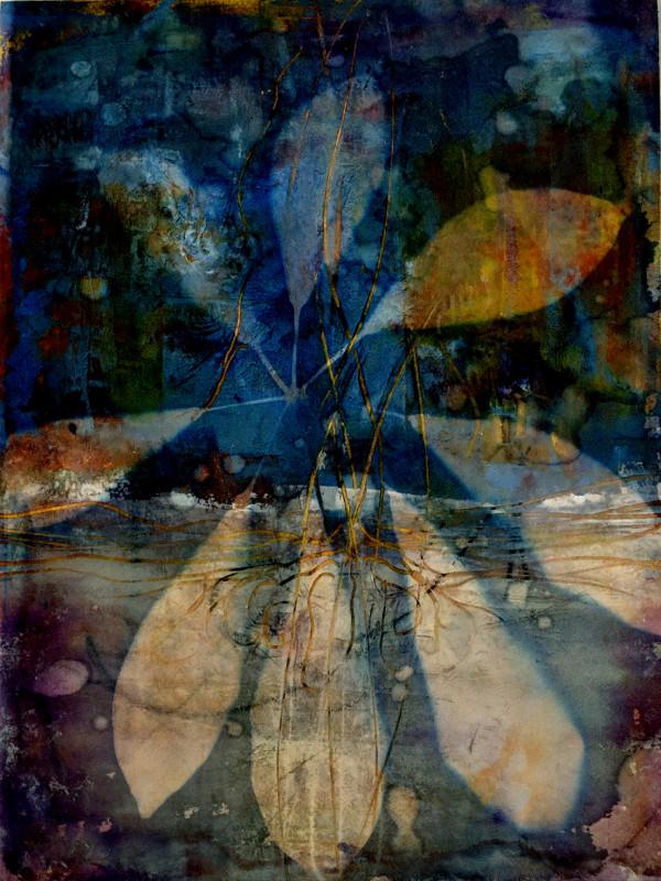Beneath by Lesley Riley