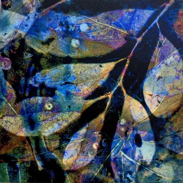 Purple Rain Again by Lesley Riley